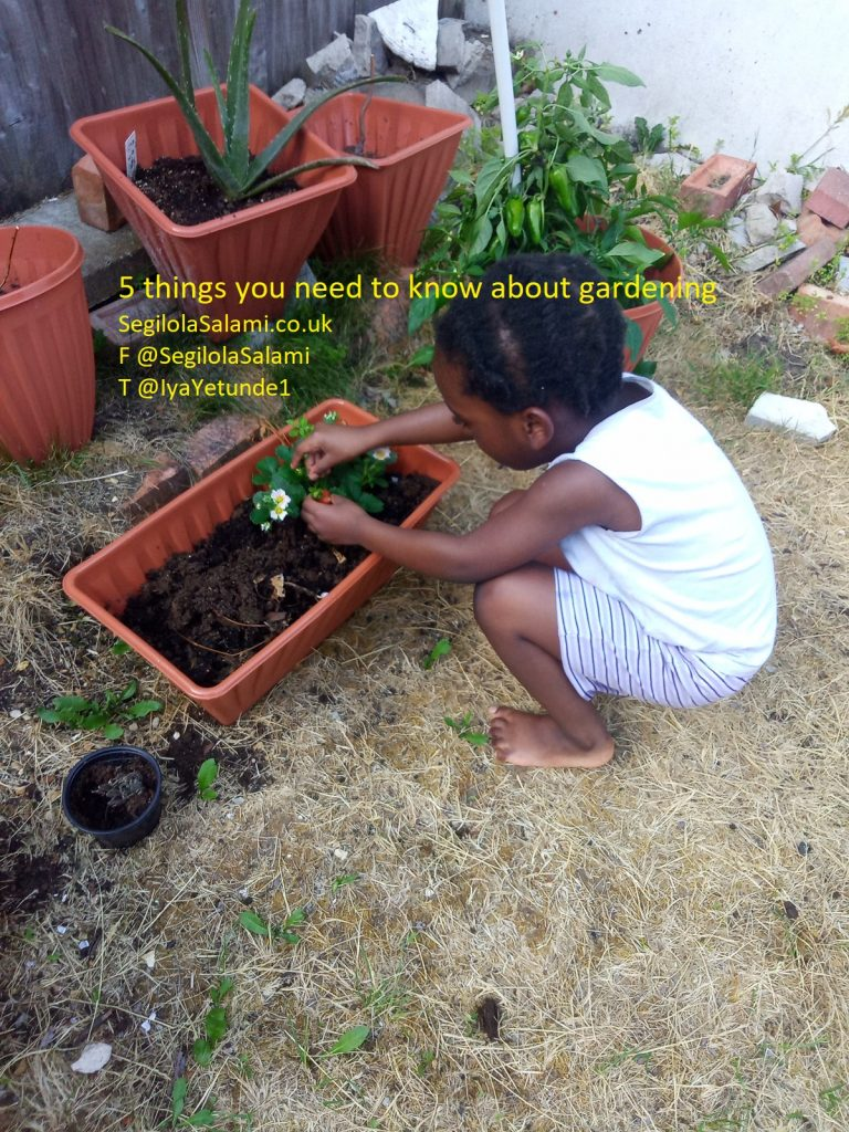 Here are 5 things you need to know about gardening - Segilola Salami