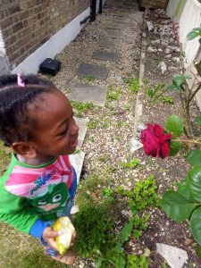 rose flower, about segilola salami daughter's picture