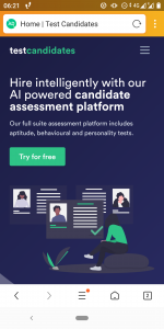 Review of TEST CANDIDATES | Psychometric test provider