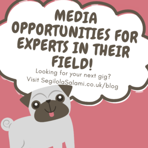 blog post image banner announcing media opportunities for experts in their field posted on segilola salami's lifestyle blog july 2021
